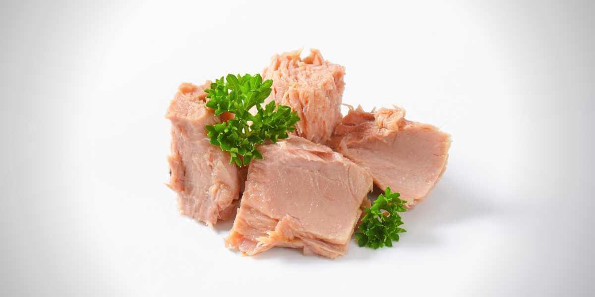 How Healthy Is A Tuna Baked Jacket Potato Paul Stokes